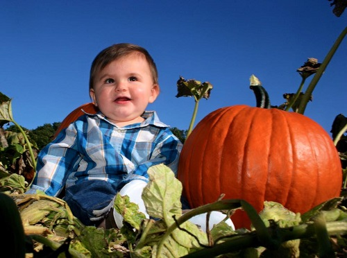 Cal picking pumpkins last year for his first fall!